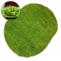 Dywan owalny SHAGGY GALAXY 9000 zielony